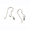 Titanium Earrings Ti Drops