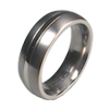 Titanium Ring - Groove Bounded Inlay