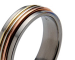 Titanium Rings with Precious Inlays